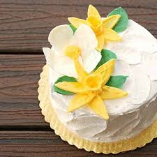 Cake Decorating Classes In Pa Classes The Makery