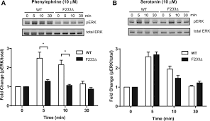 10 30 by The Protein Acyl Transferase Zdhhc21 Modulates α1 Adrenergic