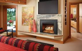 gas stove fireplace insert beautiful home design top at gas stove