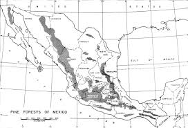 Map Of Oaxaca Mexico by Unasylva Vol 8 No 4 Composition Of Turpentines Of Mexican Pines