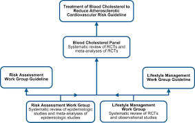journal of management style guide 2013 acc aha guideline on the treatment of blood cholesterol to