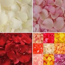fresh petals the ultimate diy decoration save on fresh petals