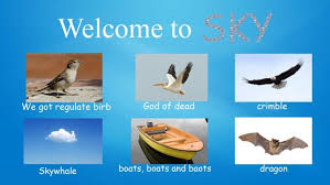Fbf Meme - why not visit meme introduces the different animals of earth s biomes