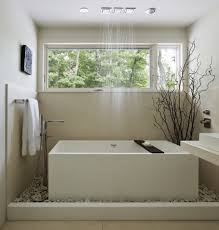bathroom zen bathroom idea with indoor plant and white square