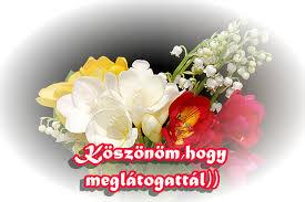 http://t0.gstatic.com/images?q=tbn:ANd9GcQ-GqoKTBKDoK-R7rAT8VB39RdW3s4mao3w1dTQiLSVcuw22rI&t=1&usg=__5bFYsRZzMqak-Q3X52phZ3OMaS8=