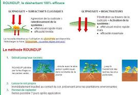De L Usage Du Glyphosate Pollution De L Eau Font Color Du Glysophate Dans Les