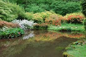 file ornamental pond lydney park gardens geograph org uk