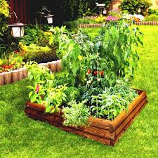 100 vegetable garden plans images best 25 raised bed plans