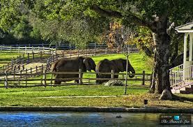michael jackson u0027s neverland valley ranch u2013 5225 figueroa mountain