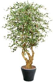 stem deluxe artificial olive tree artificial plants shop