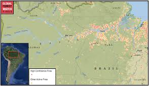 Map Of The Amazon River El Niño Vs The Amazon Researchers Worry Brazil Is Not Prepared