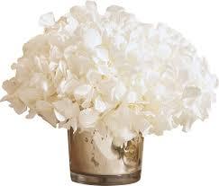 hydrangea white birch mini preserved hydrangea in vase reviews birch