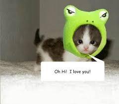 Cute I Love You Meme - really cute i like you memes cute best of the funny meme