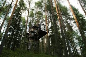 tree hotel sweden treehotel sweden out of town blog