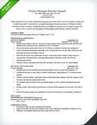 free manager resume senior management resume sles executive manager resume executive