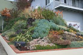Rock Gardens On Slopes Succulent Rock Garden Ideas Photograph Ducote Barnes Front