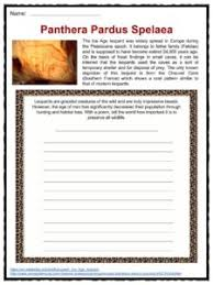 leopard facts worksheets u0026 information for kids