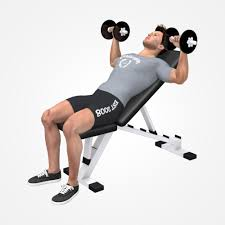Incline Bench Muscle Group 3 Must Do Exercises To Get A Big Chest Virtuagym Blog