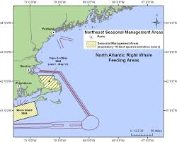 Safety Harbor Florida Map by Reducing Ship Strikes To North Atlantic Right Whales Noaa Fisheries
