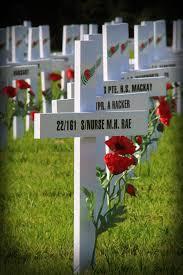 anzac remembrance battlefield nurses zimmerbitch