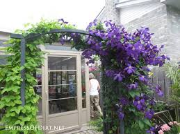 Simple Trellis Ideas 48 Best Trellis Fence Images On Pinterest Garden Gardening And