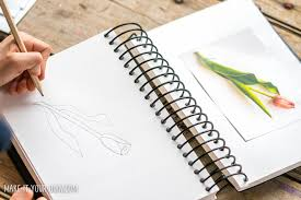 drawing from photographs nature finds