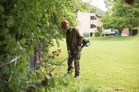 garten und landschaftsbau ausbildung garten u landschaftsbau stiftung bühl