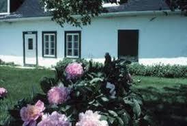 shade perennials for zone 8 and 8b home guides sf gate