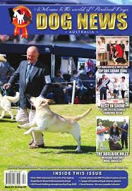 resume template customer service australian kelpie breeders north dog news australia march 2017 by dog news australia issuu