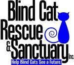 Blind Cat Sanctuary Cat Rescue U0026 Sanctuary