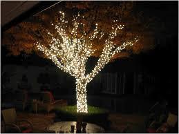 Outdoor Lighting Patio Backyard Backyard String Lights Fearsome Outdoor Solar String