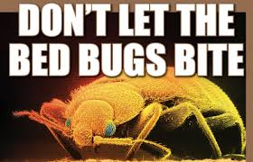 Dont Let The Bed Bugs Bite Steam Cleaners For Bed Bugs Removal