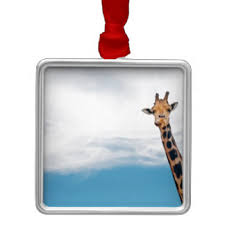 neck giraffe ornaments keepsake ornaments zazzle