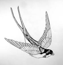 40 best swallow bird tattoo drawing designs images on pinterest