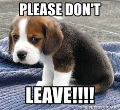 Sad Dog Meme - sad sad dog meme generator