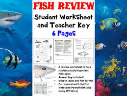 fish review worksheet biology zoology by biology zoology