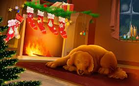 dog sleeping next to christmas fireplace photo and desktop wallpaper