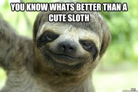 Angry Sloth Meme - you know whats better than a cute sloth rape trees sloth quickmeme