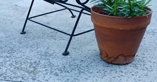 How To Clean A Concrete Patio by How To Clean Mildew And Algae Off Of Your Patio Curbly