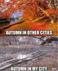 Fall Memes - fall memes that will make you fall in love with fall all over again