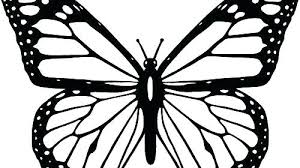 outline butterfly outline butterfly tattoos black butterfly