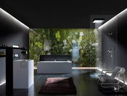Best Bathroom Accessible Universal Design Wetrooms Images On - Interior designed bathrooms
