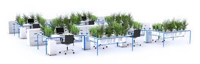 plant on desk cleanest greenest desk uses three indoor plants to grow fresh air