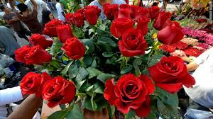 how much does a dozen roses cost a is a but it could cost you cnn