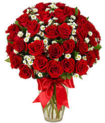 how much does a dozen roses cost 3 dozen roses at from you flowers