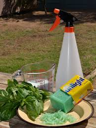 Natural Insecticide For Vegetable Garden by Organic Pesticide By The Gardening Blog