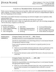 Sales And Marketing Manager Resume Examples by Free 40 Top Professional Resume Templates