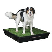 the pet loo indoor yard training system for dogs u0026 cats petco