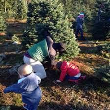 brown s christmas tree farmer brown s christmas tree fram 17 reviews christmas trees