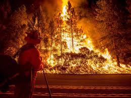 Wildfire California Video by Photos Of California Wildfire Near Sacramento Business Insider